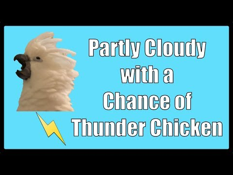 Partly Cloudy with a Chance of Thunder Chicken