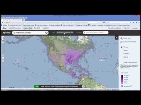 How To Find A Bird On eBird Part 3 of 3; Range and Point Maps Section