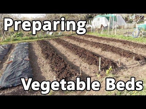 Preparing Vegetable Beds