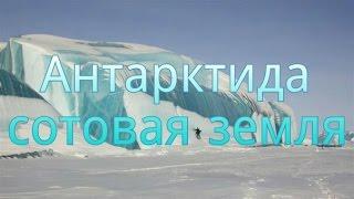 Download Антарктида 🐧сотовая земля 🌐соседняя ячейка. Video