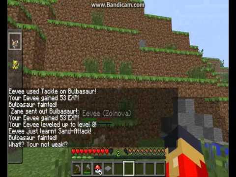 Minecraft - Pixelmon Ep-2 - PokeBall go! .... Or not...