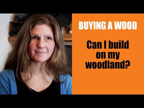 Buying a Wood: Can I build on my woodland?