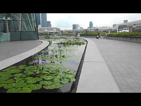 Clip scene around art science museum Singapore -2017