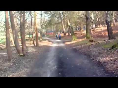 Our trip to Poole, Sandbanks and Brownsea Island 30th March 2014 Part 2