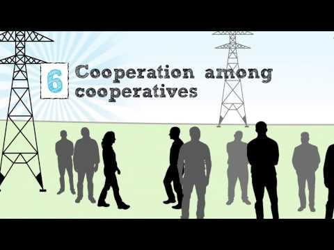 Cooperative Business Model  - 7 Cooperative Principles