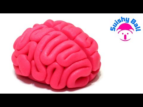 Play-Doh Brain!