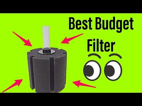 The Best Budget Aquarium Filter