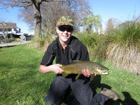 Suburban fly fishing.....In New Zealand