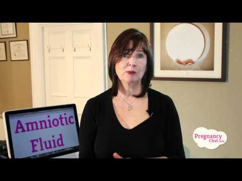 Pregnancy Amniotic Fluid