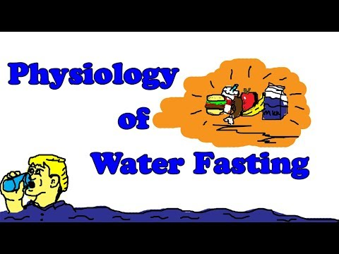Water Fasting - Physiology