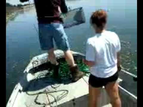 Snake river crawfishing
