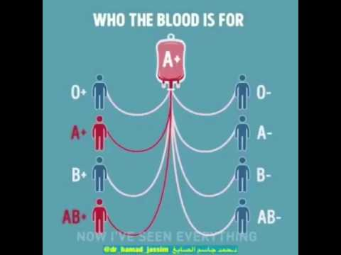 Blood groups donors and receivers