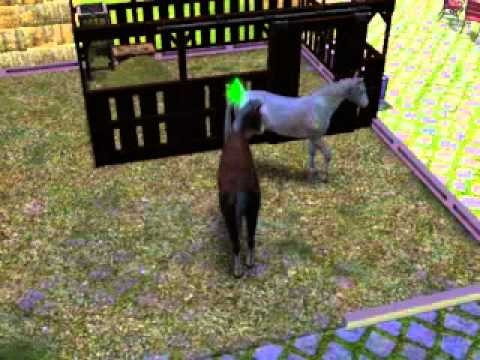 The Sims 3 Pets - My Horses Trying For A Foal
