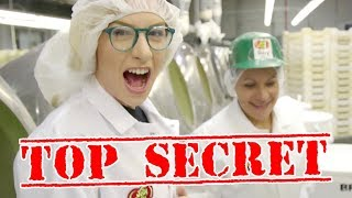 HOW BEAN BOOZLED IS MADE!