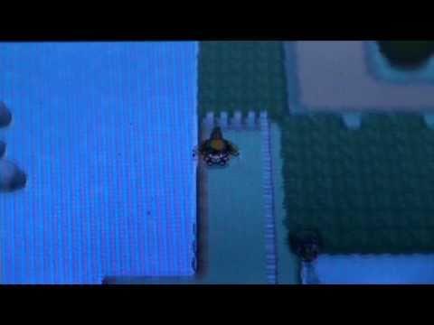 Pokemon Soul Silver - Hidden Rare Candy on Route 34