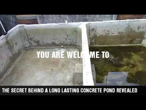 KEY THINGS TO CONSTRUCTING A LONG LASTING CONCRETE POND/ CAUSES OF FISH INJURY IN A CONCRETE POND.