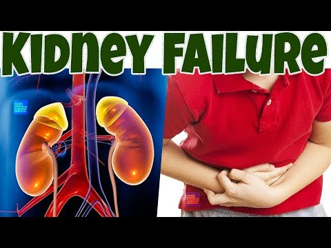Avoid Chronic KIDNEYS DISEASES & KIDNEY FAILURE By Stop Doing These 10 Things