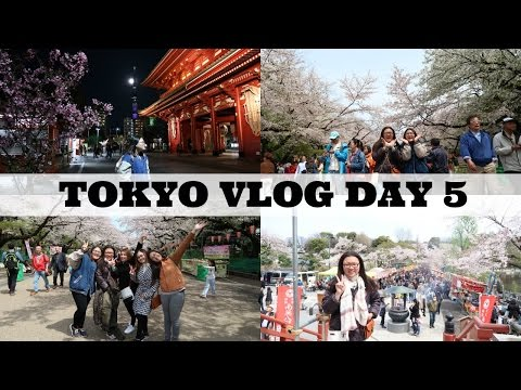 JAPAN VLOG DAY 5: Ueno Park, Tokyo Skytree, Senso-ji Temple, and Shibuya Crossing | Glory Ann ❤️️