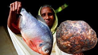 Elephant Foot and Rupchanda Fish Curry Bangali Recipe Cooking by Grandmother