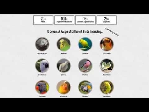 How To Build An Outdoor Bird Aviary Ehow Com