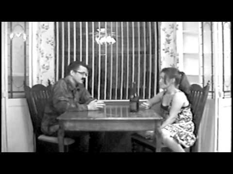 Shih Tzu Happens (B-Movie)