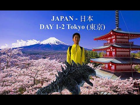 Japan Travel Guide: TOKYO SIGHTSEEING (Akihabara/Shibuya/Shinjuku) - Shibuya Crossing/Tokyo Skytree