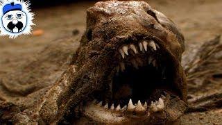 15 Creepiest Things We