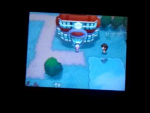 Pokémon Dream World - My Captures