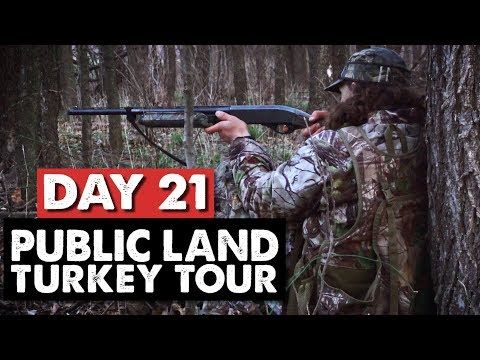 HIGH EXPECTATIONS! - Public Land Turkey Tour Day 21