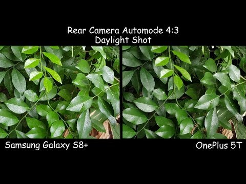 Samsung S8 Plus VS OnePlus 5T | Camera Photo Comparison