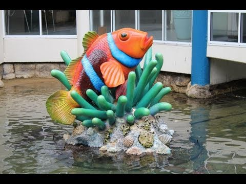 Clownfish Pond, Nemoville,  Daydream Island