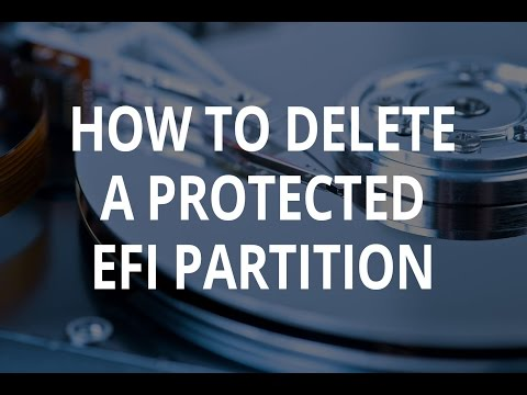 EFI disk partition - How to delete a protected EFI disk partition