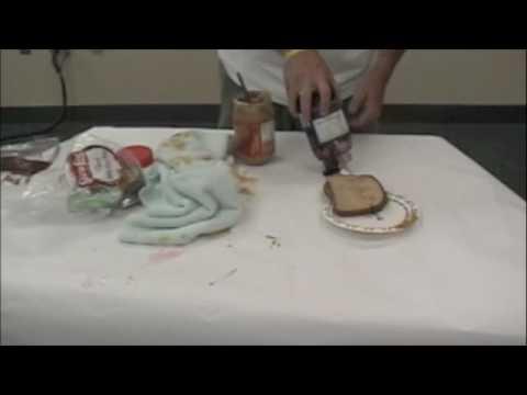 Chapter One peanut butter & jelly sandwich