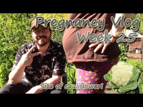 Pregnancy Vlog - Week 25 | Scheduling the C-Section & Candida