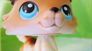 Littlest Pet Shop: Popular (Episode #7: All's Fair in Love and War)