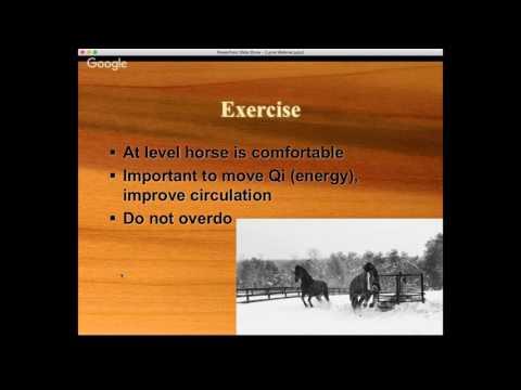 Lyme Disease in the Equine, Part II