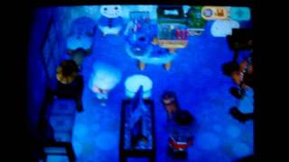 My Animal Crossing Wild World House