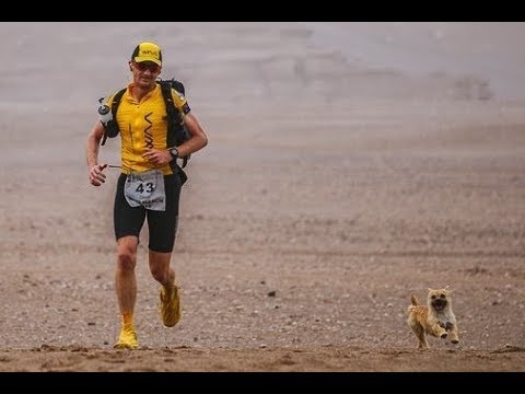This Ultra Runner Wants To Adopt The Dog That Ran Beside Him In A Grueling Gobi Desert Rac
