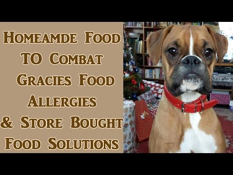 Gracies Allergies, Homemade Made Food & Commerical Food Solutions