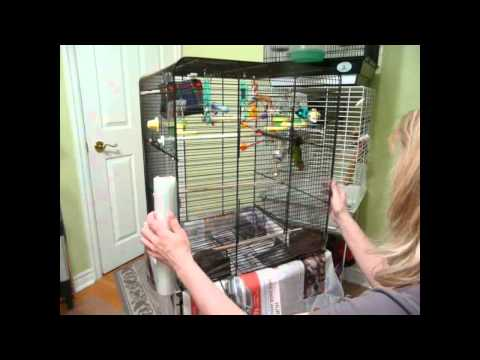 Cleaning the Bird Cages | 9 Cages To Clean