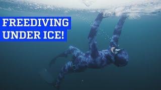 Freediving Under Ice!