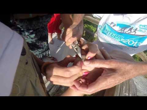 Sanibel island Florida , splinter in my foot