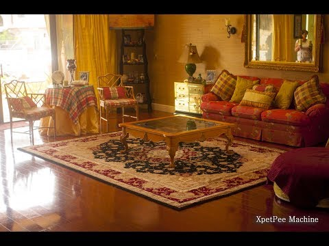remove yellow pee stains from oriental rug by PetPeePee
