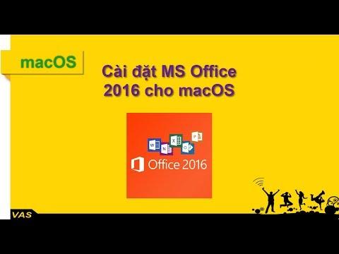 Hướng dẫn cài MS Office 2016 cho Macbook - mac OS