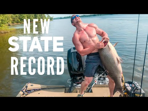 NEW STATE RECORD BUFFALO SHOT W/ RECURVE  Bowmar Bowhunting  