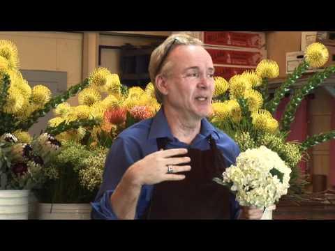 Michael Gaffney on Secrets of Preserving Flowers
