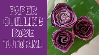 Taamak timak videos by taamak timak how to make rose flower using paper quilling strip in very easy wayquilling rose mightylinksfo