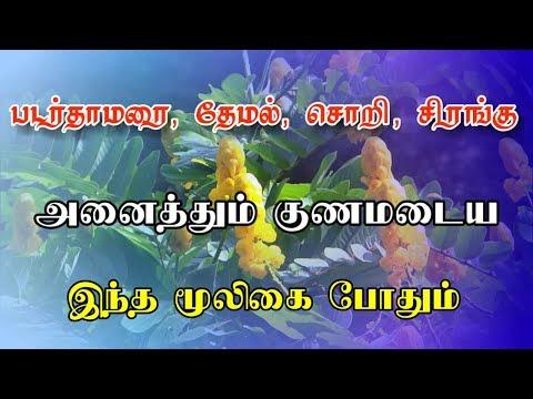 படர்தாமரையை குணப்படுத்தும் வண்டுகொல்லி | Padarthaamaraiyai kunappaduththum vandu kolli