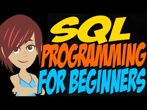 SQL Programming for Beginners