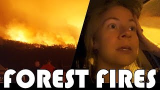 🔥 EVACUATING OUR HOUSE 🇵🇹 PORTUGAL FOREST FIRES 🔥